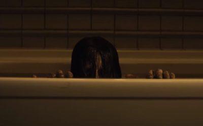 The Grudge di Nicolas Pesce: il remake dell'horror di Takashi Shimizu fa morire di paura!